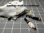 002-MarriageChallenge
